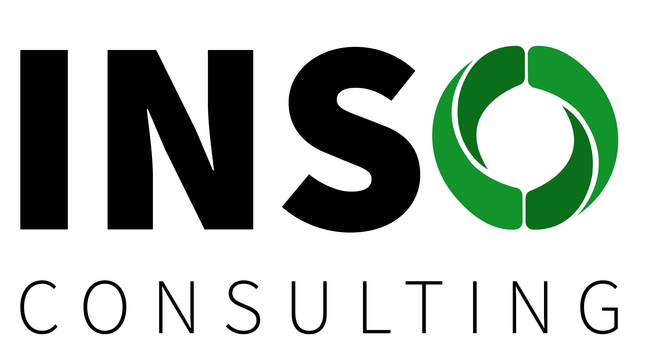 INSO Short Information, Industry Source Consulting Inc