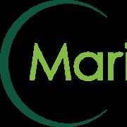 Stock Symbol M Company Search Results